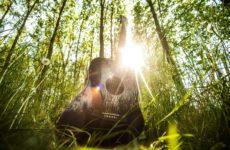 acoustic-guitar-407214_1920